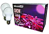 Miracle LED Almost Free Energy 150W MAX Flowering Red LED Grow Lite - For Intense Flowering and Fruiting of your Indoor Plants and DIY Horticulture & Hydroponic Gardens (604302) 2Pack