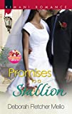 Promises to a Stallion (The Stallion Brothers)