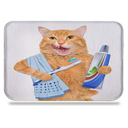 Colorful Star Fat cat Brushing Teeth Design Bath mat,Super Absorbent&Stain Resistant&Machine-Washable Made of Flannel,Quick-Dry,Non Slip,Non Toxic, Odor Free 24 L x 16 W