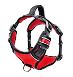 Black Rhino - The Comfort Dog Harness with Mesh Padded Vest for Small - Large Breeds | Adjustable | Reflective | 2 Leash Attachments on Chest & Back - Neoprene Padded Training Handle (Large, Red/Bl)