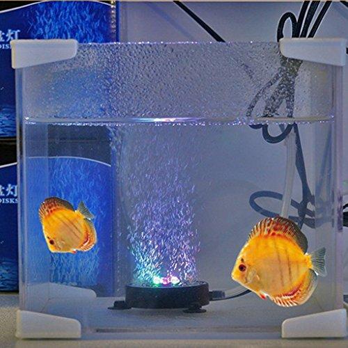 Jili Online US Plug RGB LED Air Curtain Bubble Stone Disk Fish Aquariums Lighting Bulbs by Jili Online (Image #6)