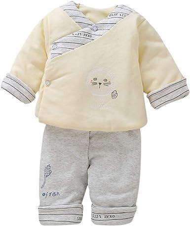 DAZISEN Conjunto de Ropa para Bebé Unisex - Recién Nacido Algodón Tops de Manga Larga y Pantalón Conjuntos de 2 Piezas: Amazon.es: Ropa y accesorios