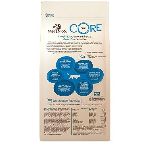 Image of Wellness Core Natural Grain Free Indoor Dry Cat Food, Indoor Salmon & Herring, 2-Pound Bag
