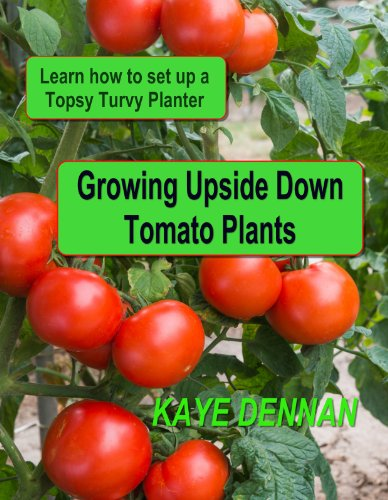 Growing Upside Down Tomato Plants: Learn How to Set Up a Topsy Turvy Planter (Vegetable Gardening)