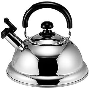 Quickone Takei Energy-Saving Fuefuki Whistle Kettle, The perfect tea pot!