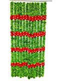 afarza Home Decor Artificial Flower Garland toran for Door Decoration Main gate Wall Hanging Diwali Pack of 2 Strings (Green red)