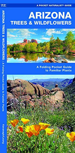 Arizona Trees & Wildflowers: A Folding Pocket Guide to Familiar Plants (Wildlife and Nature Identification)