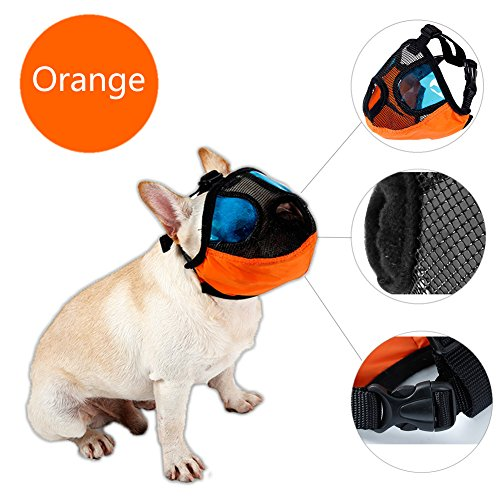 Delifur Dog Muzzle Pet Mouth Mask Anti Barking and Biting Mesh Muzzles for Snub Nose Dog Pug Pekingese Pitbull Boston Terrier Shih Tzu (M, Orange) ()