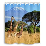 Y&M HOME National Park of Kenya Africa Wildlife Animal Shower Curtain, Nature Safari Giraffes in Mountain, Mildew Resistant Waterproof Shower Curtain, Bath Curtains Hooks Included, 70X70in