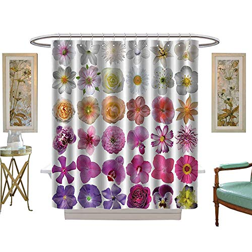 Auraise Heybee Shower Curtains 3D Digital Printing ePattern of Various Vase Flowers Petunia Botanic Wild Orchid Floral Nature Bathroom Set with Hooks - Greek Key Vase
