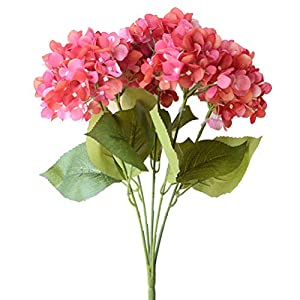 Youngman 5 Heads Hydrangea Beautiful Artificial Flower Bunch Bouquet Home Wedding Decor (Rose) 100