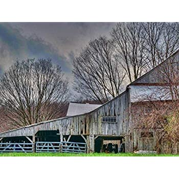 Prime Leader The Old Barn, Oil Painting On Canvas Modern Wall Art Pictures for Home Decoration (20 x 30 inch,Frameless)