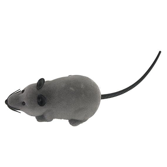 TO_GOO Ratón teledirigido para ratón RC con Regalo de Juguete con Control Remoto para niños Mayores de 3 años Gris: Amazon.es: Productos para mascotas