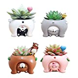 Youfui Ceramic Animal Flowerpot Succulent Plants Container Desk Mini Ornaments (4pcs See The World)