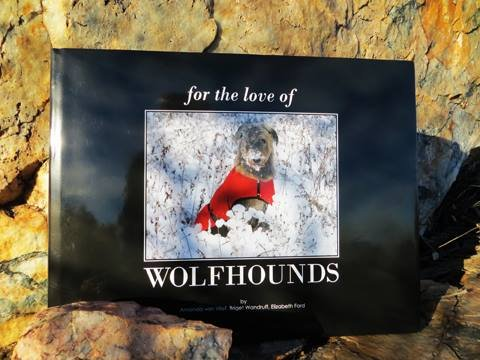 For the Love of Wolfhounds: A Love Story Told Through Photographs of Irish Wolfhounds From Around the World thumbnail