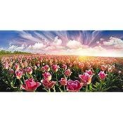 Amazon Leyiyi 10x65ft Spring Valley Flowers Blossom Backdrop