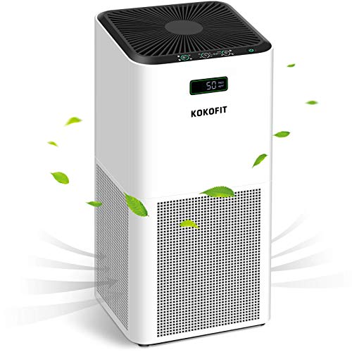KOKOFIT Air Purifier for Home Large Room with H13 True HEPA Filter, Air Cleaner Up to 800 Sq.Ft. for Allergies and Pets, Smokers, Mold, Pollen, Dust, Remove 99.9% Odors for Bedroom