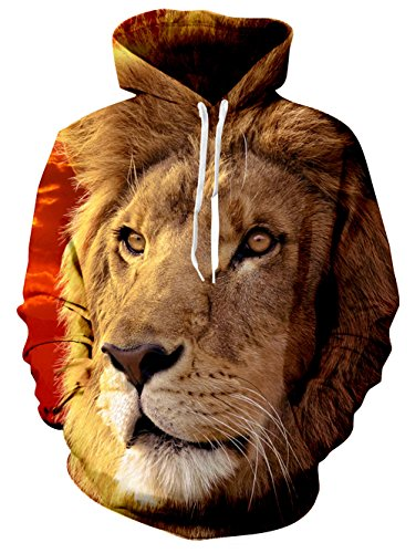 Raisevern Unisex 3D Printed Drawstring Pockets Hoodie Sweatshirts Plus Velvet, Small Cool Lion