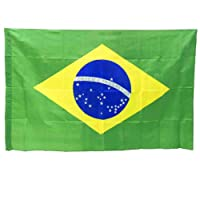 Bandeira do Brasil grande