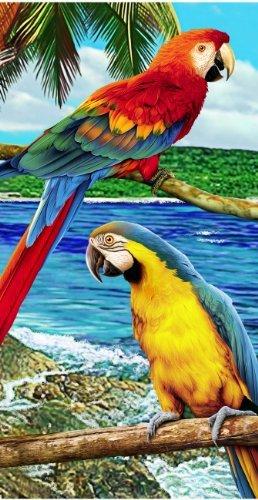 - Parrot Birds in Jungle Beach Towel Bath Towel
