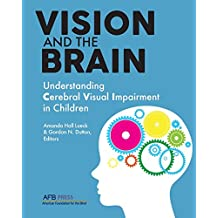 Vision and the Brain: Understanding Cerebral Visual Impairment in Children