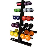VTX by Troy Barbell Vinyl 1-10 lb. Dumbbell Set with Rack
