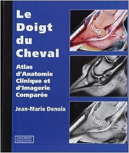 Book Le Doigt Du Cheval: Atlas d'Anatomie Clinique et d'Imagerie Comparée