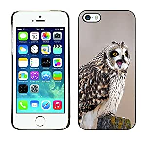 YOYO Slim PC / Aluminium Case Cover Armor Shell Portection //Funny Screaming Owl //Apple Iphone 5 / 5S