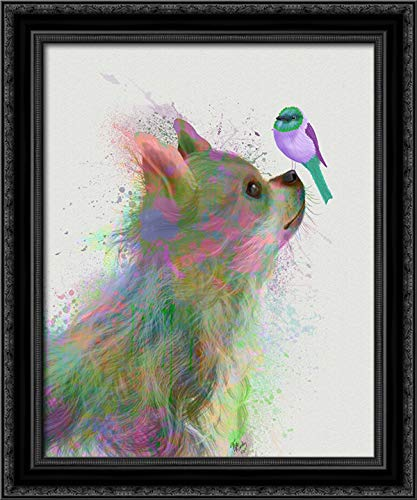 Chihuahua, Long Haired, Rainbow Splash 20x24 Black Ornate Wood Framed Canvas Art by Fab Funky