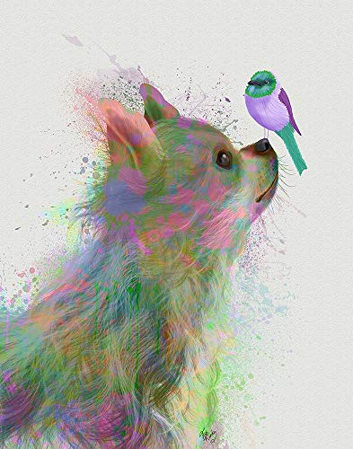 Chihuahua, Long Haired, Rainbow Splash by Fab Funky 15