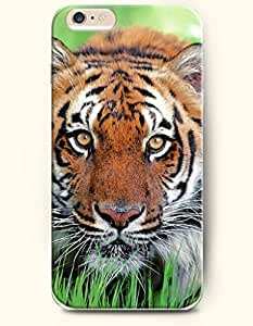 SevenArc Phone Case for iPhone 6 Plus 5.5 Inches with the Design of Tiger Watching somewhere