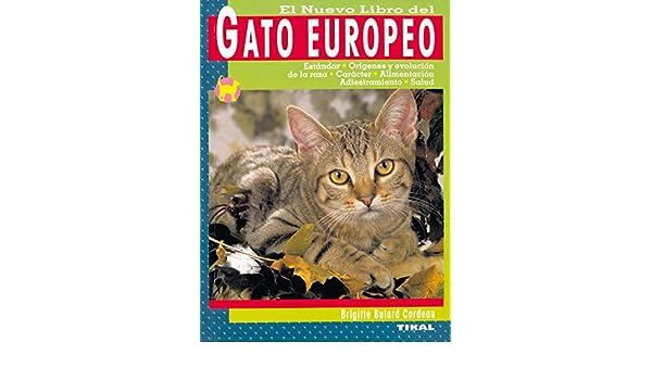 El Nuevo Libro del Gato Europeo: Estandar, Origenes y Evolucion d e la Raza, Caracter, Alimentacion, Adiestramiento y Salud: 9788430548224: Amazon.com: ...