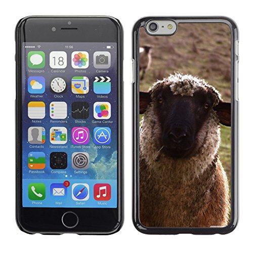 """Premio Sottile Slim Cassa Custodia Case Cover Shell // V00003809 des moutons // Apple iPhone 6 6S 6G PLUS 5.5"""""""