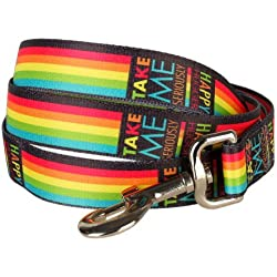 "Blueberry Pet Durable Rainbow Stripes Designer Dog Leash 6 ft x 5/8"", Small, Leashes for Dogs"