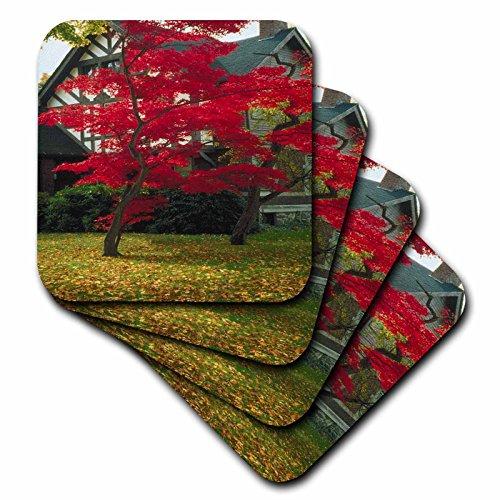 3dRose TDSwhite - Miscellaneous Photography - Pretty Foliage Tudor Home - set of 4 Ceramic Tile Coasters (cst_285426_3) ()