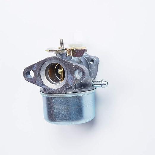 MZY LLC 799869 Carburador para Briggs & Stratton 12D800-123K00 ...