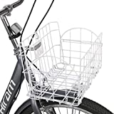 HIRAM Adult Tricycle with Removable