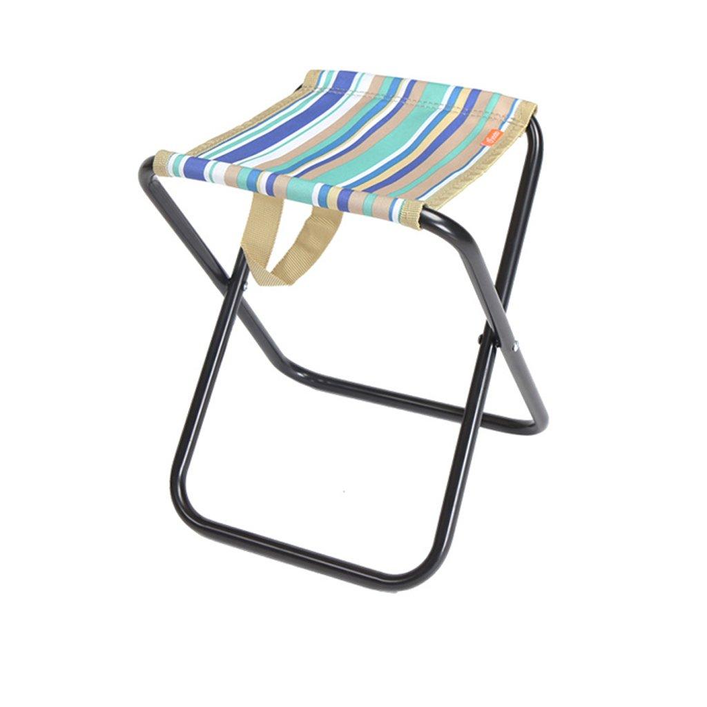 WANGXIAOLIN Fishing Chair Fold Multifunctional Handy Adult Folding Stool Sketching Equipment (Color : Blue)