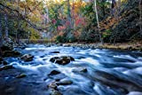 Smoky Mountains Photography Art Print - Picture of Flowing River and Fall Colors in Trees Tennessee Nature Home Decor 5x7 to 30x45