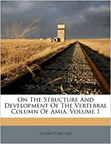 On The Structure And Development Of The Vertebral Column Of Amia