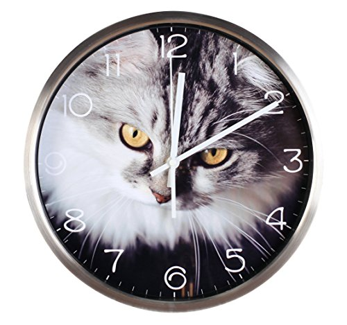 t theme Background Super Silent Wall Clock Quiet Sweep Decorative Clocks (12Inch, Silver3) ()