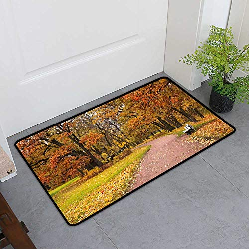 TableCovers&Home Absorbent Door Mat, Fall Doormats for Living Room, Idyllic Rural Landscape Tranquility in The Park Pathway Woodland Peaceful Environment (Multicolor, H32 x W48)