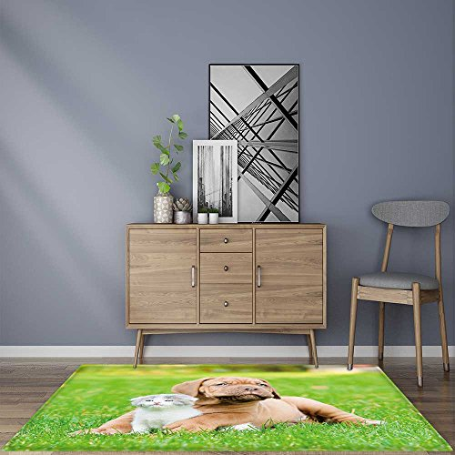 for Home or Travel Bordeaux puppy dog with newborn kitten on green grass Easier to Dry for BathroomW35.5 x L47 ()