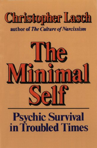 The Minimal Self: Psychic Survival in Troubled Times cover