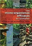 Les micro-organismes efficaces au quotidien : Au service de la terre, des animaux et des hommes