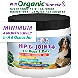 Novity Pet Glucosamine | Chondroitin | MSM + Much More for Dogs and Cats | 100% Natural and Organic Hip and Joint Supplement for Dogs and Cats and Ages | Made in The USA | 6 oz Powder