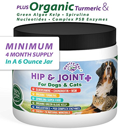 Cat Joint Health Supplement - Novity Pet Glucosamine | Chondroitin | MSM + Much More for Dogs and Cats | 100% Natural and Organic Hip and Joint Supplement for Dogs and Cats and Ages | Made in The USA | 6 oz Powder
