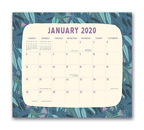 Orange Circle Studio 2020 Magnetic Monthly Calendar Pad, August 2019 - December 2020, Botanicals
