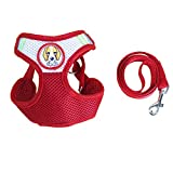 VICTORY,Adjustable Pet Dog Leash Harness Vest Set Walking Jogging Training Breathe Freely Nylon + Mesh Cloth + Stainless Steel Leash Small Medium Dogs