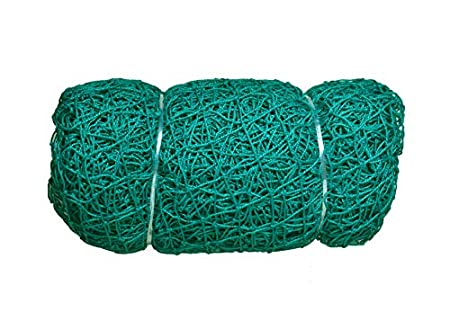 easyshoppingbazaar Nylon Anti Bird and Monkey Protection Net with 2mm Thicknes Strong Strings (10x20ft, Green)